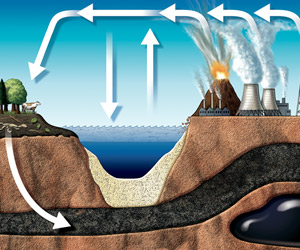 Carboncycle300
